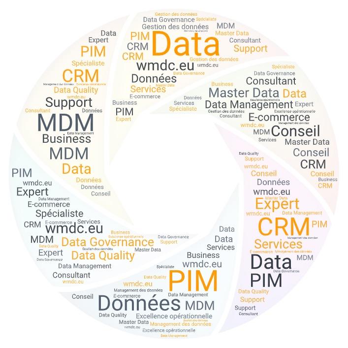 WMDC consultant en management des données